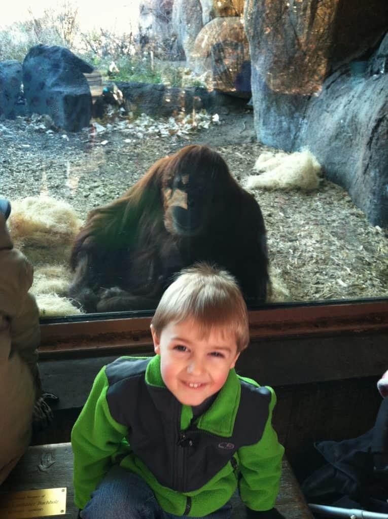 Denver Zoo, We Got the Funk1