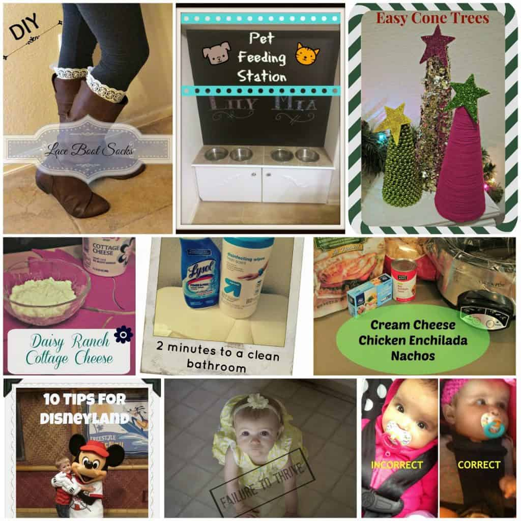Boot Lace Socks, Pet feeding station, DIY Cone Trees, Daisy Ranch Cottage Cheese, Quick Cleaning Tips, Cream Cheese Chicken Enchiladas, Tips for traveling to Disneyland with small kids, Failure to Thrive, Car seat safety