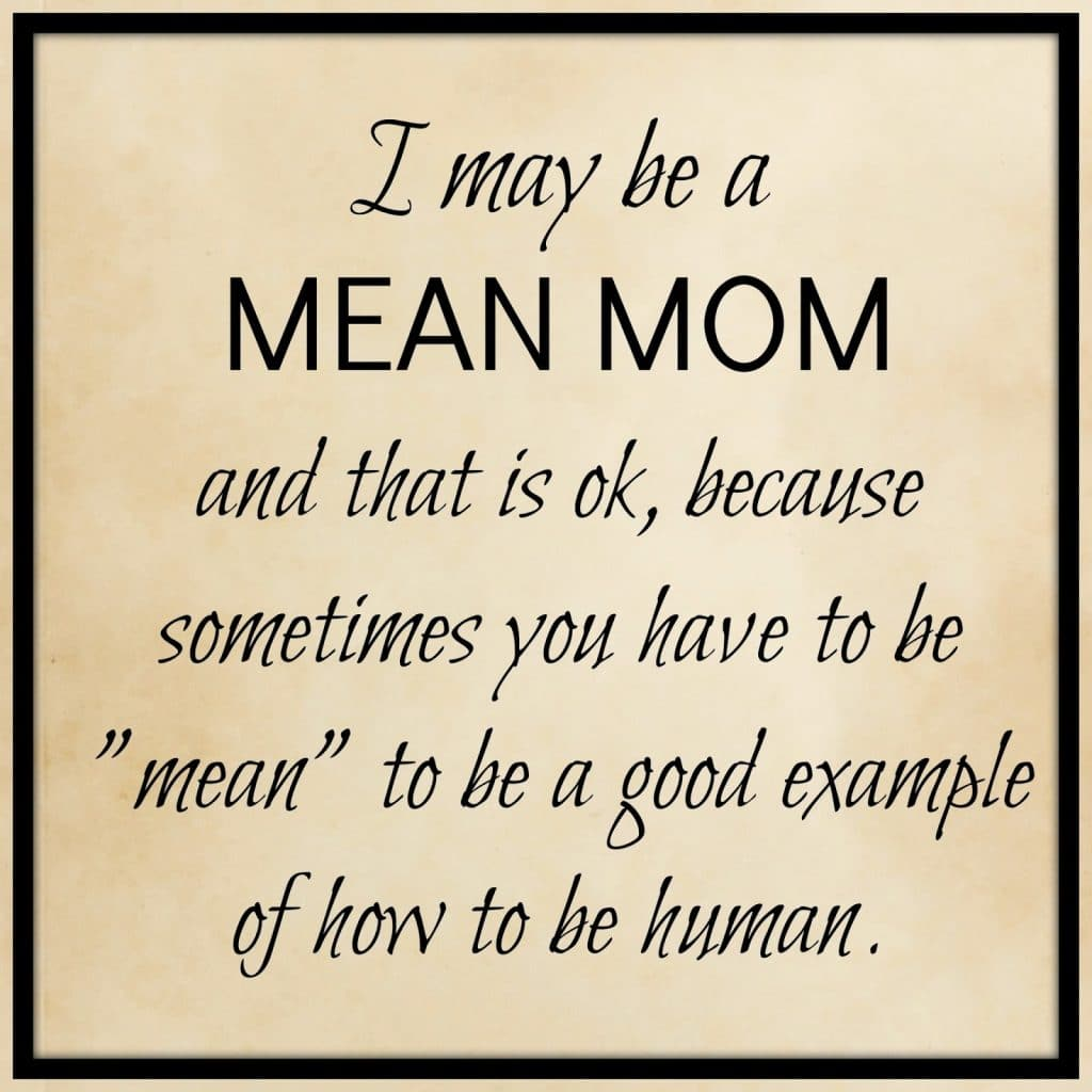 Mean Mom Quote, How to handle the word hate.