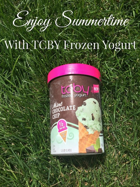 Frozen Yogurt Malt, Giveaway,TCBY, Frozen Yogurt, Get The Scoop Tour, Ice Cream Substitute,Denver Frozen Yogurt / Houston Frozen Yogurt / Austin Frozen Yogurt