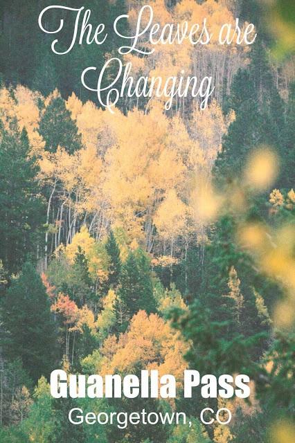 Guanella Pass Colorado, Georgetown Colorado, Aspens Changing Colorado, Leaves changing colorado, 2015