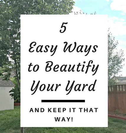 5 Easy Ways to Beautify Your Yard and Keep It That Way!