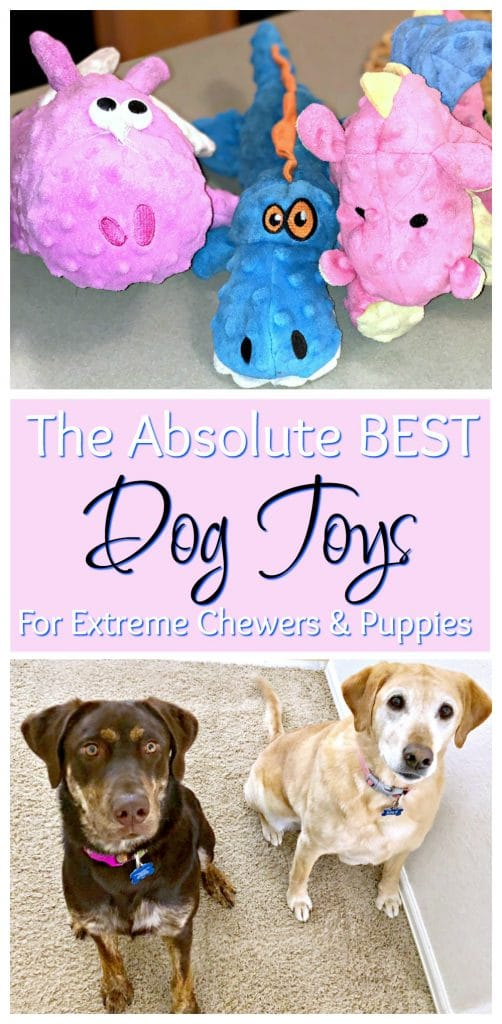 Do you have dogs that are destroying your house? If you are looking for the best toys for extreme chewers and puppies the go dog toys are it. These heavy chewer dog toys are reinforced and withstand serious puppy force. They are the best dog toys on the market and nearly indestructible.