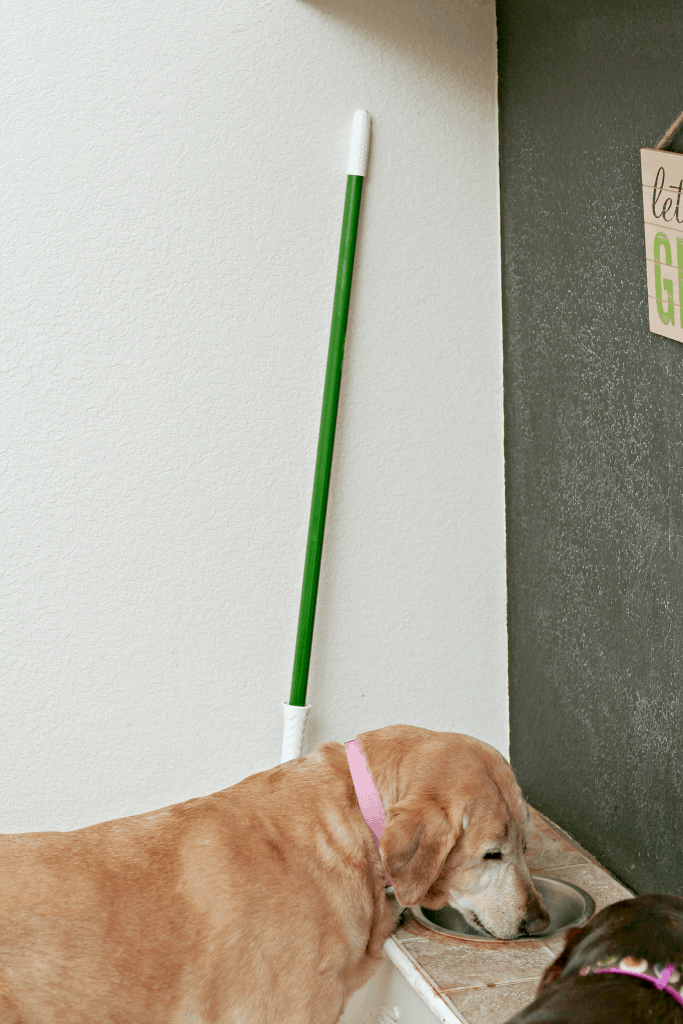 Embracing Life's Messes, How to clean up after your puppy, easy puppy cleaning hacks, best mop for cleaning up after dogs, best mops for cleaning up puppy messes, most absorbent mops for cleaning, easy to wring mops, Libman coupon 2018,