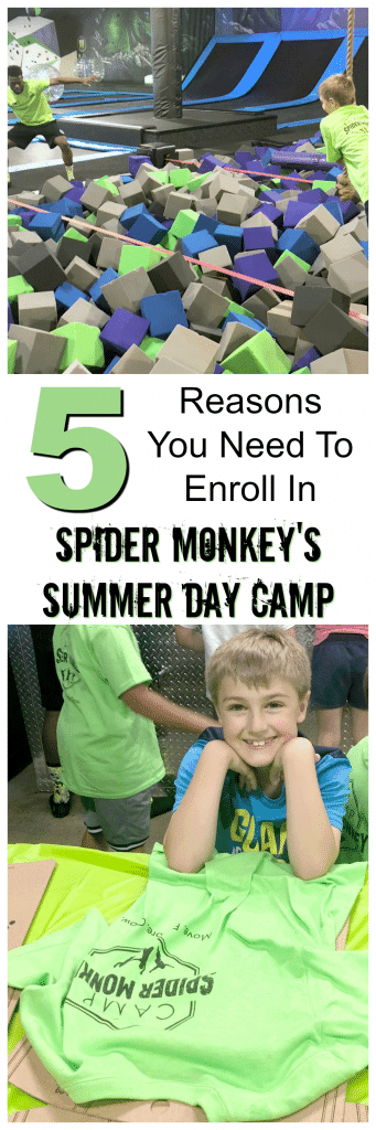 Spider Monkey Aurora Summer Camp