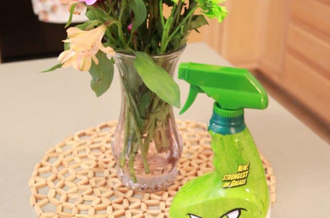 Holiday Cleaning Tips to Make Life Stress Free
