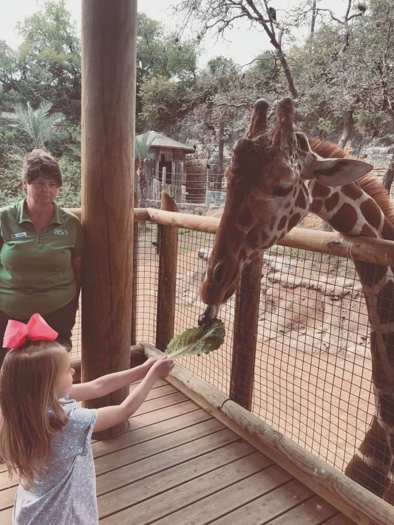 Reasons to visit the San Antonio Zoo, Things to do in San Antonio Texas, Family friendly things to do in San Antonio Texas