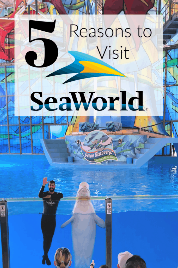 5 reasons to visit SeaWorld, SeaWorld San Antonio, Tips to Visit SeaWorld