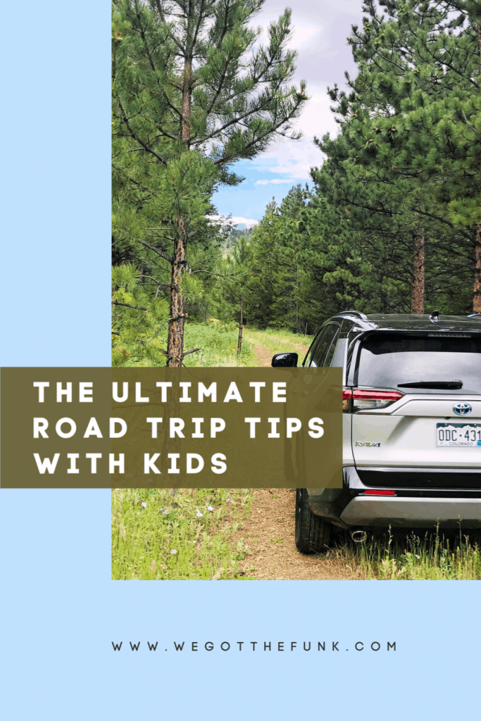 The Ultimate Road Trip Tips with Kids