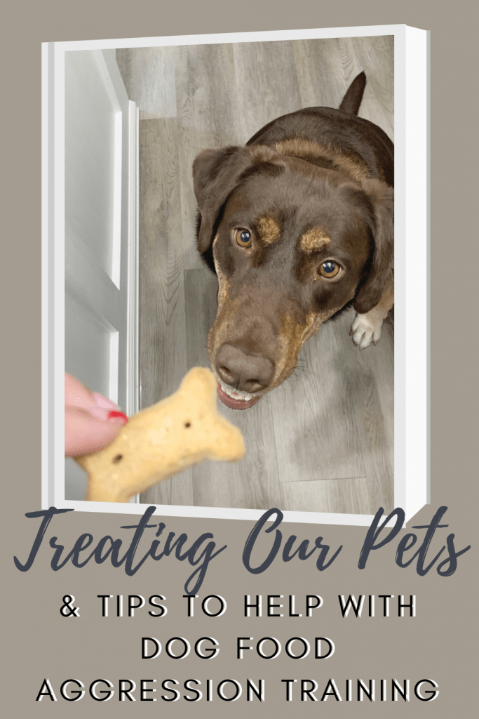 Treating Our Pets & Tips to Help with Dog Food Aggression Training Techniques
