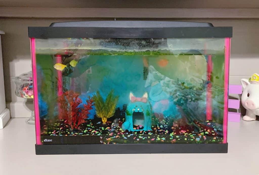 filthy fish tank