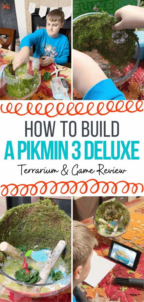 How to Build a Pikmin 3 Deluxe Terrarium & Game Review