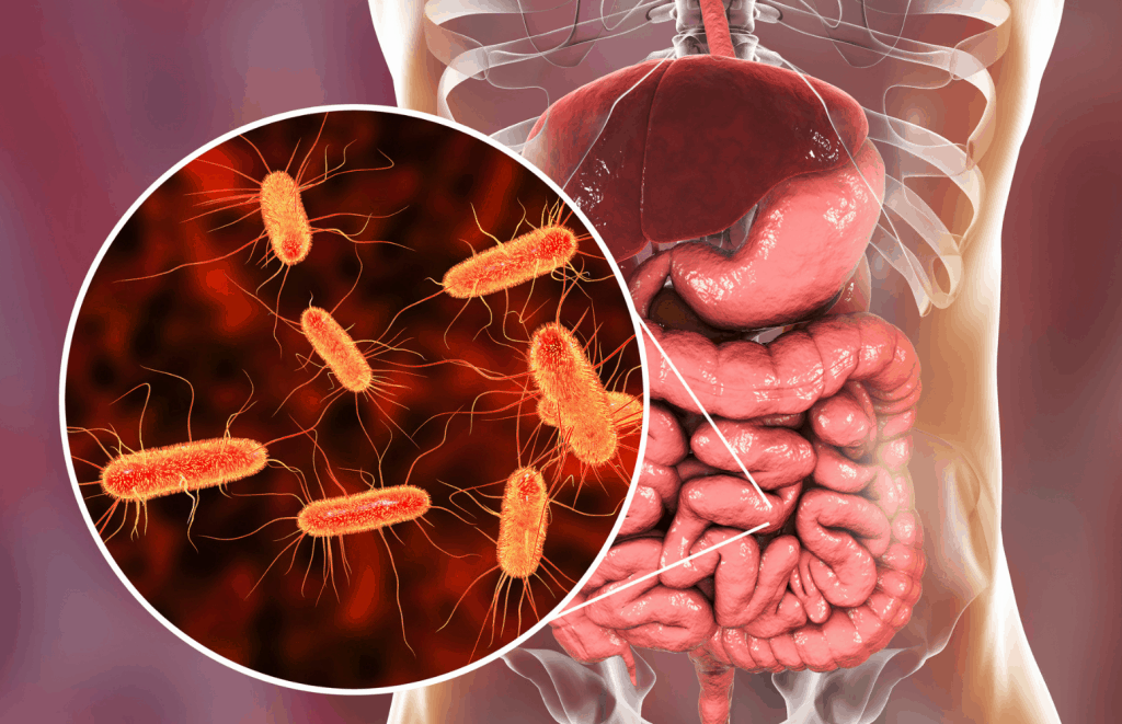 Fun facts about your microbiome